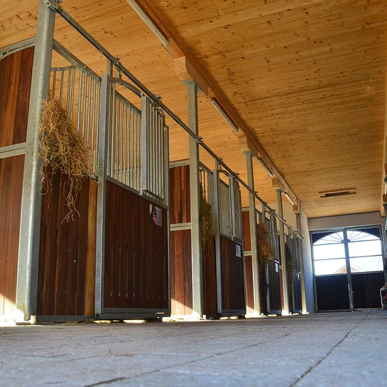 Stall, Einstellbox, Pferd, Noriker, Familie Wild, Meinrad