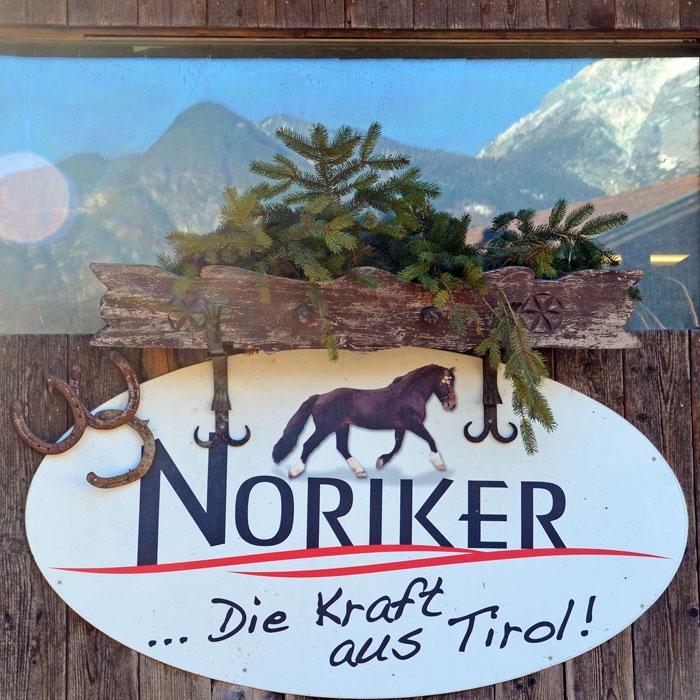 Noriker. Norikerzucht beim Meinrad. Leistungen. Stall. Zirl in Tirol.